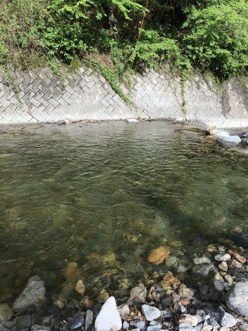 自然豊かな渓流