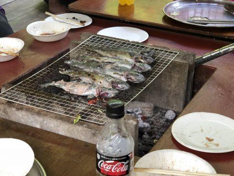釣り上げたばかりの魚は塩焼きで!