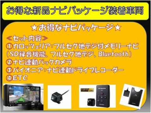 flexdream高崎店ナビPKG【ランクルED】