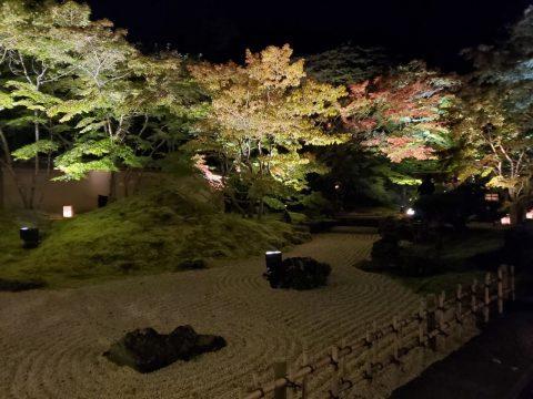 紅葉を見にお出かけしよう🍁 秋にピッタリなプラドをご紹介します🚙💨